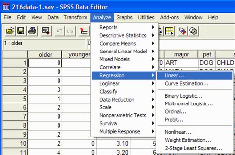 Slope Non Exles by Linear Regression Correlation Coefficient Spss