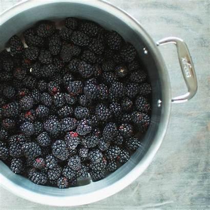 Blackberry Jam Ball Lavender Preserved Freshly Blackberries