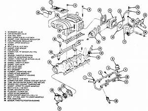 1995 Mustang Gt Fuel Injectors And Fuel Rail  Need Help