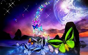 Colorful Butterfly Backgrounds 8 Background Wallpaper ...