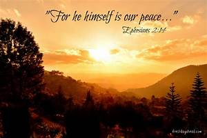 Finding Peace in a World of Struggle: Prayer for the ...