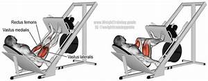 Incline Leg Press Exercise Instructions And Video