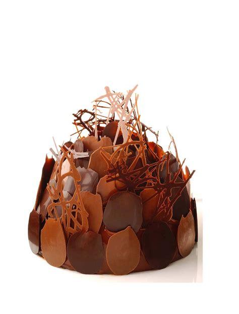 hervé cuisine cake chocolat premium buisson chocolat praliné par alain ducasse