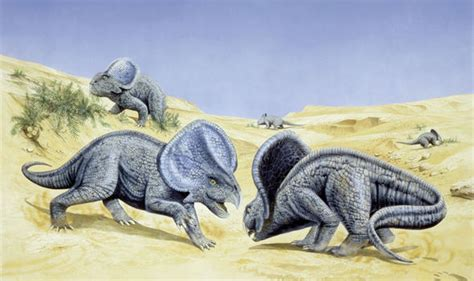 The Reason Why Dinosaurs Looked So Captivating Has Been