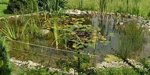 Kleiner Gartenteich Anlegen : gartenteich anlegen gartenteich anlegen folienteich ~ Michelbontemps.com Haus und Dekorationen