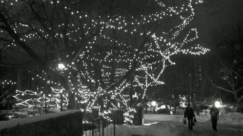 white christmas lights christmas lights