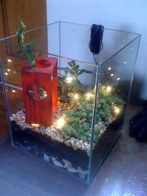 Aquarium Als Terrarium Nutzen by 17 Best Images About Aquarium Recycling Reciclando