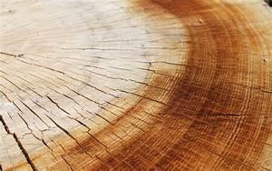 wood wallpaper cracked - HD Desktop Wallpapers 4k HD