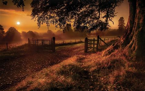 carreteras naturaleza paisajes campos arboles puerta de la
