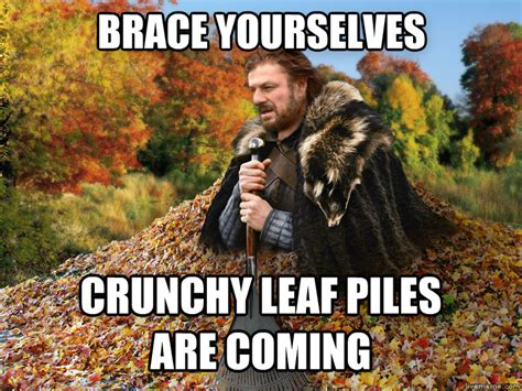 Autumn Memes - livememe com imminent autumn
