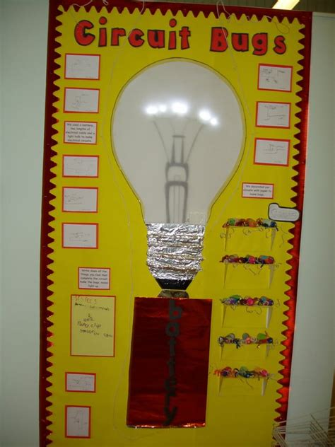 circuit bugs display classroom display science bugs bulb