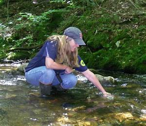 It Support Objectives Volunteer River Monitoring Program Maine Department Of