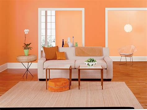 Orange Walls, Paint Colors And Dinosaurs