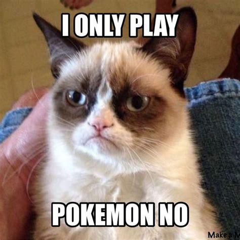 No Cat Meme 25 Best Ideas About No Cat Meme On Grumpy Cat