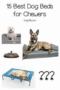 15 best dog beds for chewers dogvills for Good dog bed for chewers