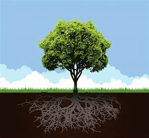 Conceptual tree with root and grass clip arts, free