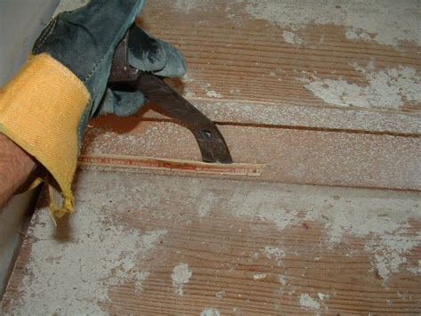Laminate Or Hardwood On Stairs Preparation, Tampa Bay, Step By Step Instructions Carpet Cleaning Salisbury Wiltshire Capitol Diy Installation Kit Hall Runners Continuous Python Morph Genetics Empire Houston Reviews How To Make Shampoo With Vinegar Beetles Damage Clothing Do You Get Coffee Stains Out Of White
