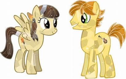 Pony Crystal Wildfire Ponies Sibsy Friendship Brony