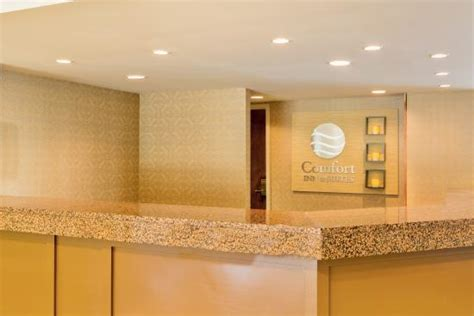 bwi airport information desk front desk picture of comfort inn suites bwi airport