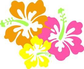 Hawaiian Luau Border Clip Art