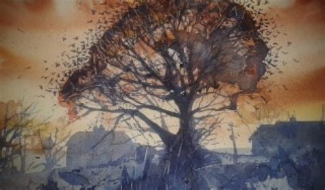 watercolours  rachel toll  exeter daily