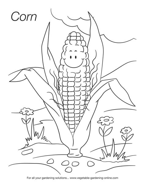 images  kids coloring pages  pinterest