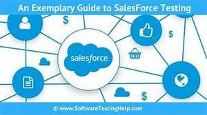 Salesforce Testing Beginner U0026 39 S Guide  U2014 Software Testing Help