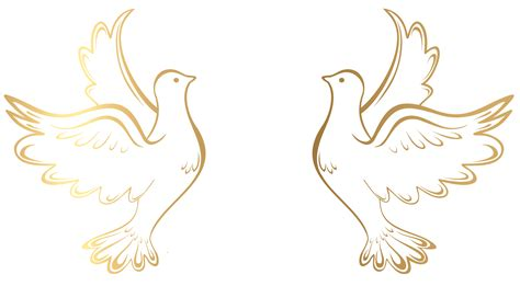 Dove clipart wedding Dove wedding Transparent FREE for