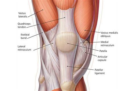 Dolori Ginocchio Interno - esercizi per rinforzare le ginocchia