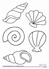 Colouring Shell Coloring Pages Sea Beach Shells Summer Seaside Drawing Seashell Printable Colour Activityvillage Easy Template Drawings Print Para Colours sketch template