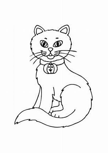 Coloring Pages Cat Printable Sheets Cats Kitten