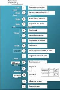 Camaronson  3 4 1  Diagrama De Flujo De Proceso Y De