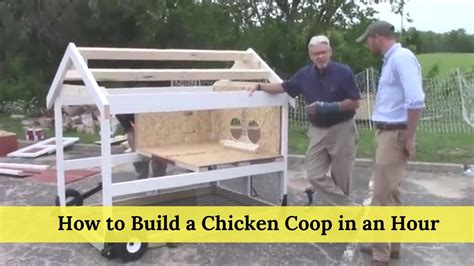 build  chicken coop   hour youtube