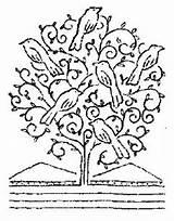 Mustard Tree Bible Luke Readings Commentary Chapter sketch template