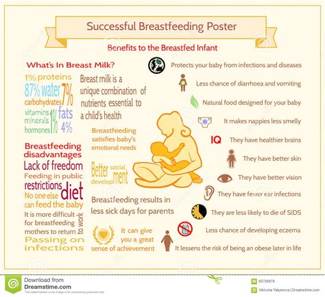 Successful Breastfeeding Poster Benefits To The Breastfed