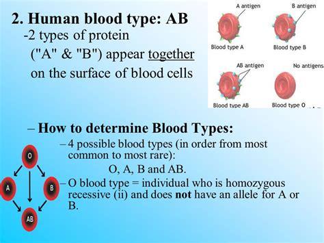 Human Genetics Chapter Ppt Video Online Download