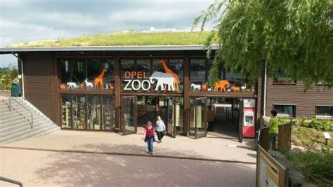 familienausflug zum opel zoo  kronbergtaunus