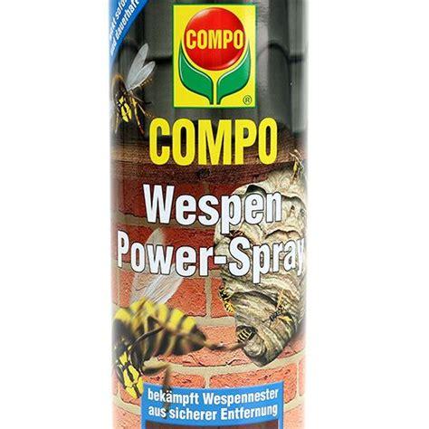 wespen vernichten spray wespen bek 228 mpfen spray bayer bayer wespen power spray kaufen spezial spray kriechende und