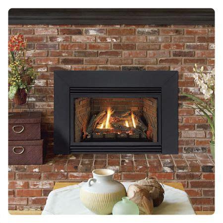 id   replace  fireplace   gas insert