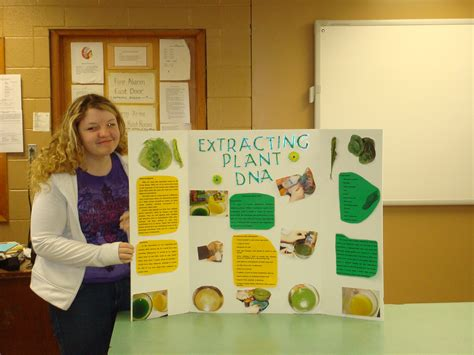 worksheets for 4th grade science fair project ideas