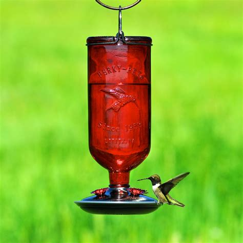 hummingbird feeder perky pet red 16 oz antique glass bottle hummingbird feeder