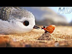 Piper Disney Pixar __Oscar_winning_Short_Movie. (HD)
