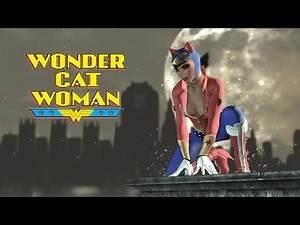 SKIN; Batman; Arkham City; Wonder Cat Woman