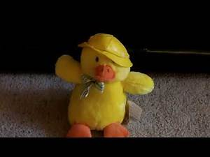 Ducksley The Singing Duck Review (Russ)