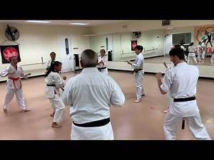Bull in the Ring Karate Drill