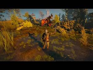 Witcher 3 - How to kill stronger enemy - Level 10 Witcher Vs Level 18 Wyvern