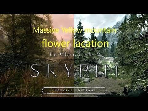 Massive Yellow Mountain Flower location in skyrim remastered