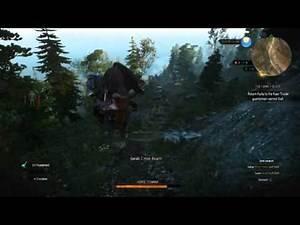 The Witcher 3: Roach glitch