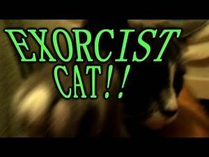 EXORCIST CAT!!