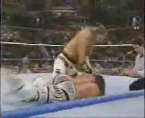 Shawn Michaels vs Marty Jannetty Royal Rumble 1993 part 2